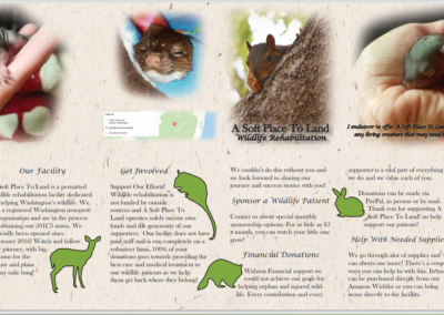 wildlife brochure